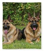 German Shepherds - Mother And Son Fleece Blanket