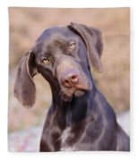 German Short-haired Pointer Puppy Fleece Blanket