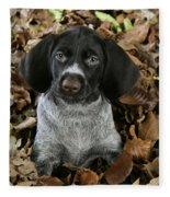 German Wire-haired Pointer Puppy Fleece Blanket