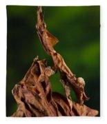 Ghost Or Dead Leaf Mantis Fleece Blanket