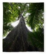 Giant Cashew Tree Amazon Rainforest Brazil Fleece Blanket