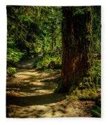 Giant Douglas Fir Trees Collection 2 Fleece Blanket