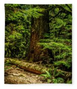 Giant Douglas Fir Trees Collection 3 Fleece Blanket