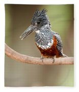 Giant Kingfisher Megaceryle Maxima Fleece Blanket