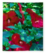 Giant Poppies Fleece Blanket