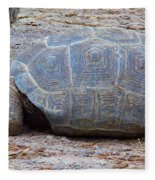 The Giant Aldabra Tortoise Fleece Blanket
