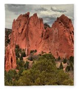 Giants Among The Trees Fleece Blanket