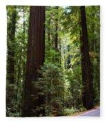 Giants And The Road Fleece Blanket