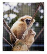Gibbon On A Swing Fleece Blanket