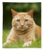 Ginger Cat In Garden Fleece Blanket