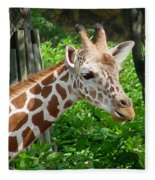 Giraffe-09034 Fleece Blanket