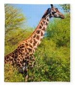 Giraffe Among Trees. Safari In Serengeti. Tanzania Fleece Blanket