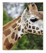 Giraffe Beauty Fleece Blanket