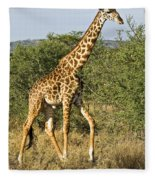 Giraffe From Tanzania Fleece Blanket