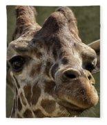 Giraffe Hey Are You Looking At Me Fleece Blanket