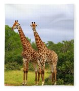 Giraffe Males Before The Storm Fleece Blanket