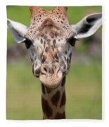 Giraffe Peek A Boo Poster Fleece Blanket