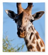 Giraffe Portrait Close-up. Safari In Serengeti. Fleece Blanket