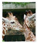Giraffes-09023 Fleece Blanket