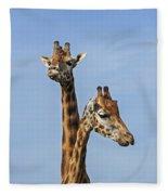 Giraffes 1 Fleece Blanket