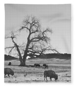Give Me A Home Where The Buffalo Roam Bw Fleece Blanket