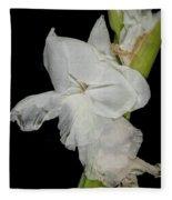 Gladiolus Past Time Fleece Blanket