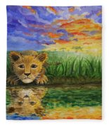 Glancing In The Water Fleece Blanket