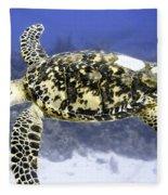 Gliding Sea Turtle Fleece Blanket
