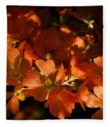 Globe-mallow Blooms  Fleece Blanket