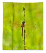 Glorious Golden-winged Fleece Blanket