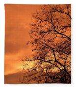 Glorious Silhouettes 1 Fleece Blanket