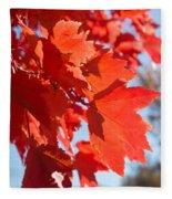 Glowing Fall Maple Colors 4 Fleece Blanket
