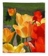 Glowing Sunlit Tulips Art Prints Red Yellow Orange Fleece Blanket