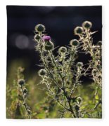 Glowing Thistle - 1 Fleece Blanket