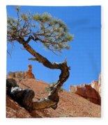 Gnarled Pine In Bryce Canyon Utah Fleece Blanket