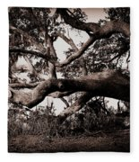 Gnarly Limbs At The Ashley River In Charleston Fleece Blanket