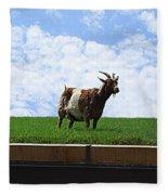 Goat On A Sod Roof In Sister Bay In Wisconsin Fleece Blanket