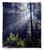God Rays Through The Fog Fleece Blanket