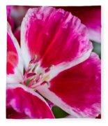 Godetia Pink And White Flower Fleece Blanket