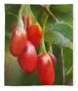Gojo Berries Fleece Blanket