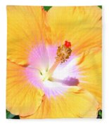 Gold Hibiscus Fleece Blanket