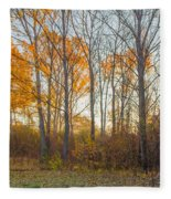 Golden Autumn Fleece Blanket
