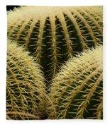 golden barrel cactus Mexico Fleece Blanket