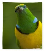 Golden-browed Chlorophonia - Chlorophonia Callophrys Fleece Blanket