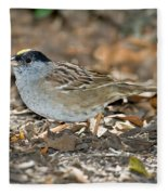 Golden-crowned Sparrow Fleece Blanket