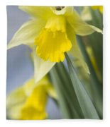 Golden Daffodils Fleece Blanket