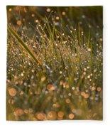Golden Dew Drops Fleece Blanket