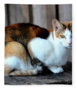 Golden Eyed Ferrel Fleece Blanket