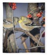 Golden Finch Cold Shoulder Fleece Blanket