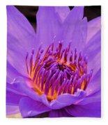 Golden Glow Of The Lavender Lotus Fleece Blanket